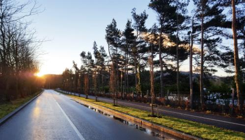 Driveway to AEE Europe